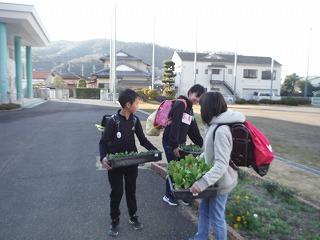 1月14日(火) 花いっぱい活動